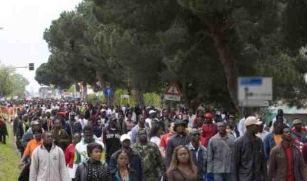 """Boom di africani e musulmani: """"Nel 2050 gli europei saranno quasi estinti"""""""