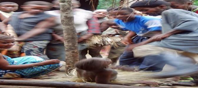 Etnia  Kyenge assalta campo profughi: sgozzati 30 bambini Pigmei