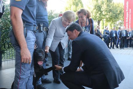 Renzi distrae soccorsi dal sisma per farsi foto col cane, che lo schifa