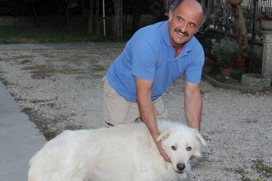 Italia: dove è proibito difendersi, cane punito per avere morso intruso