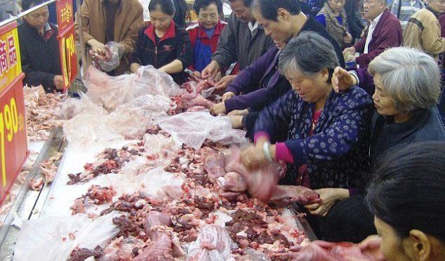 Cinesi affamati di Asini: mattanza in Africa