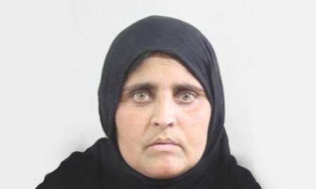 afghanasharbat-gula-2015-e1425313724136