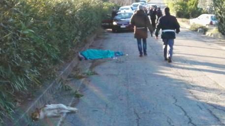 Auto su pedoni fa strage: morto uomo e due cani