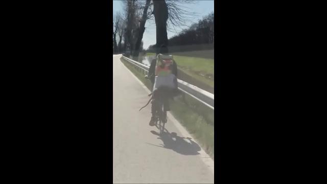 Profugo in bici con enorme roditore morto sul portapacchi – VIDEO