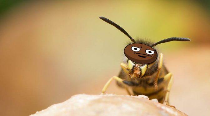 """E' allarme per insetti migranti: """"Aumenteranno i morti"""""""