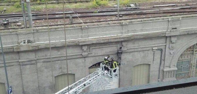 Milano: clandestino si impicca davanti a tutti – FOTO
