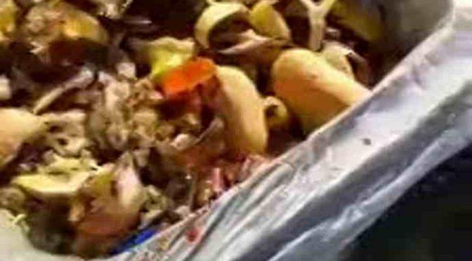 Scempio a Treviso: profughi gettano chili di cibo buono – VIDEO