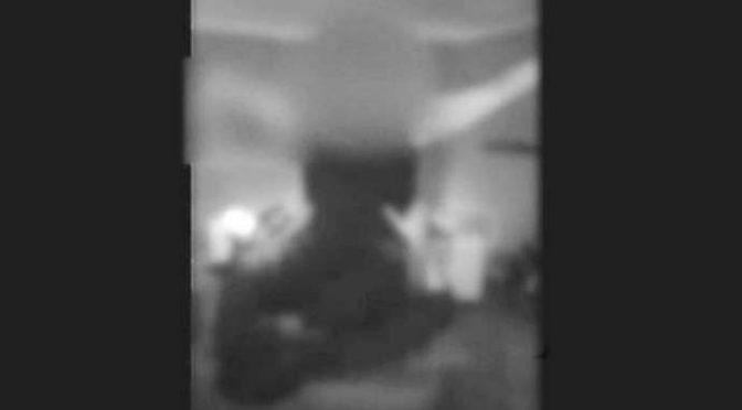 ANCHE SPETTACOLO LAPDANCE PER I PROFUGHI, VOLONTARIE SCATENATE – VIDEO