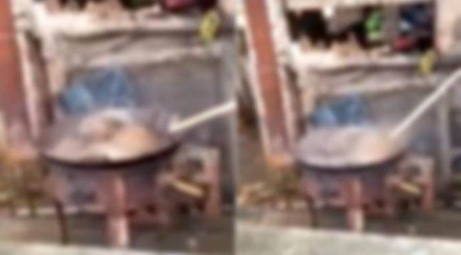 Cane bollito vivo da Cinesi, folla ride mentre guaisce