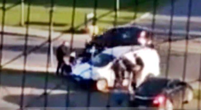 Islamici decapitano gattini, attaccano volontaria che tenta di salvarli: le strappano capelli – VIDEO CHOC