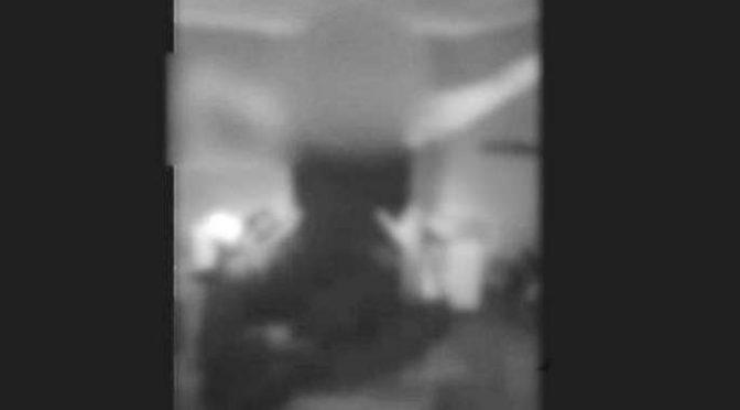 ANCHE LAPDANCE PER I PROFUGHI, VOLONTARIE SCATENATE – VIDEO