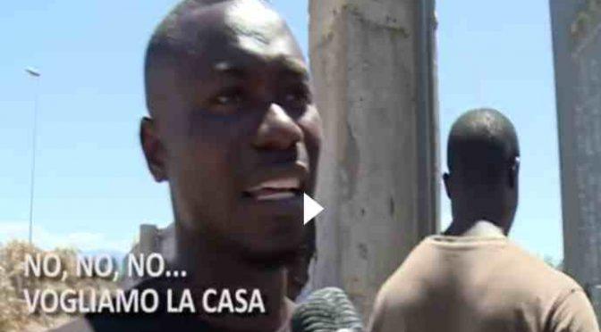 """Clandestini bruciano tendopoli: """"Ora vogliamo casa"""" – VIDEO"""
