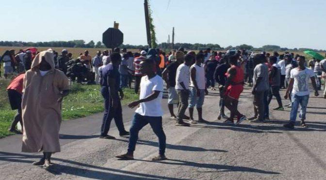 Profughi bloccano strada, nuove violenze a Conetta – VIDEO