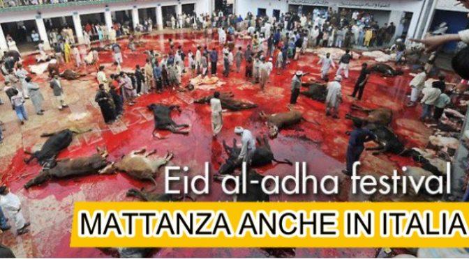 Islam, 1 Settembre Festa Sgozzamento: saranno migliaia gli animali sacrificati in Italia