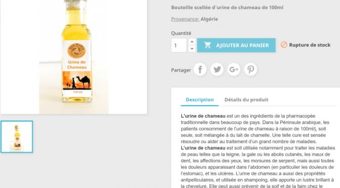 """Negozi etnici vendono piscio di cammello in bottiglia: """"Guarisce ogni male"""""""