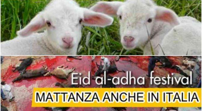 Festa islamica: oggi in Italia sgozzati senza pietà 400mila animali