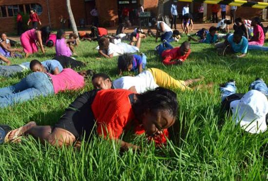 Sudafrica: Neri mangiano l'erba, perché 'avvicina a Dio'