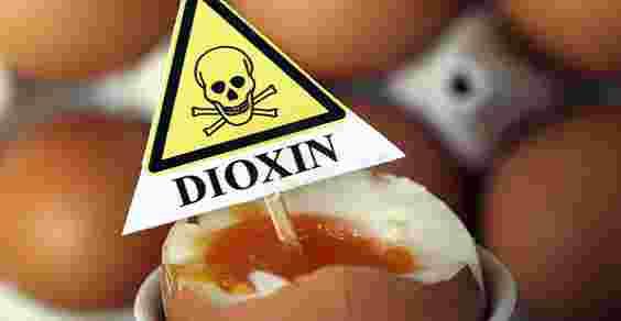 Libera circolazione UE: Uova contaminate anche in Italia