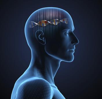 Test del DNA può predire l'intelligenza, che quindi è innata