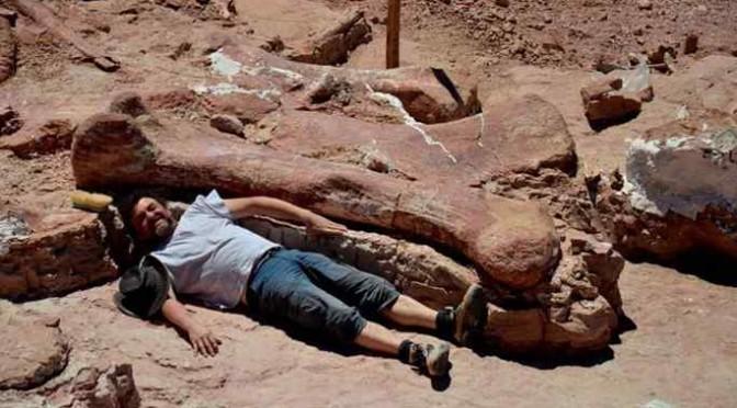 Scoperto il dinosauro più grande di sempre: alto come palazzo di sette piani
