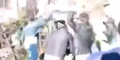 Turchia in Europa: cucciolo di cinghiale lapidato dalla folla – VIDEO