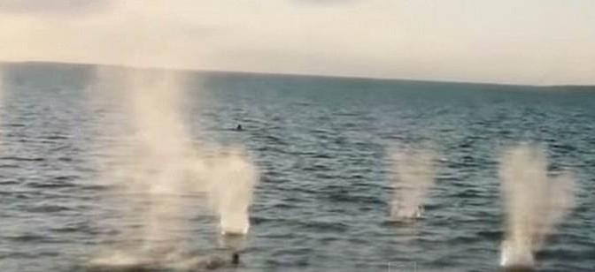 Africani islamici gettano in mare uomini e li mitragliano – VIDEO CHOC