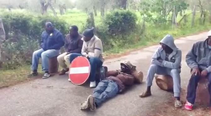 """Vacanza in Sardegna non soddisfa Profughi, bloccano strada: """"Vogliamo orari flessibili"""" – VIDEO"""