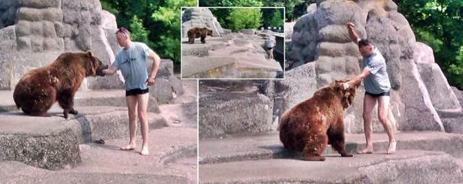 Scavalca recinto zoo e attacca orso – FOTO