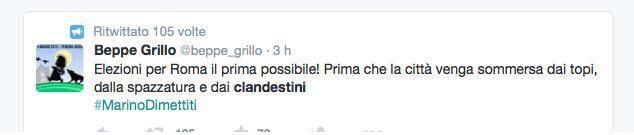 Ha ragione Grillo, Roma è invasa da topi e clandestini