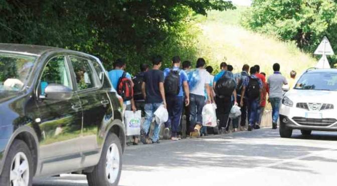 """Profughi islamici rifiutano lavoro: """"Non facciamo lavori socialmente utili"""""""