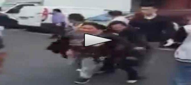 Cinesi pestano Zingare scoperte a rubare – VIDEO