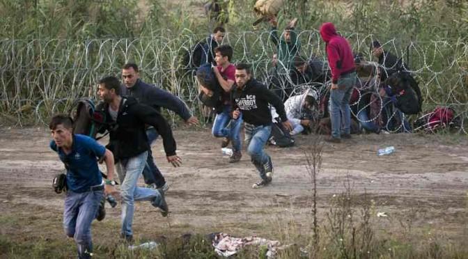 Assalto Islamico all'Ungheria: ecco i 'profughi' di ISIS armati di bastoni – FOTO