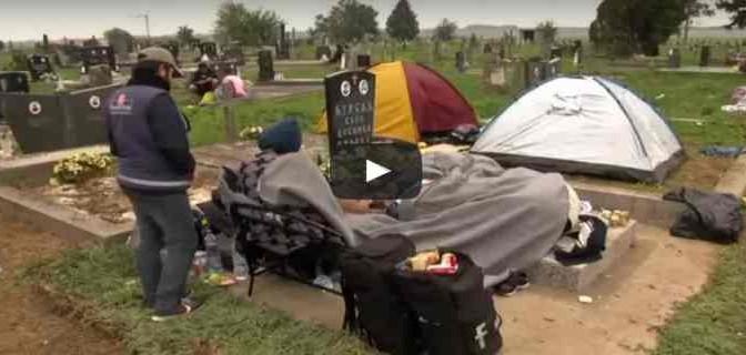 Profughi islamici bivaccano e defecano in cimitero cristiano – VIDEO