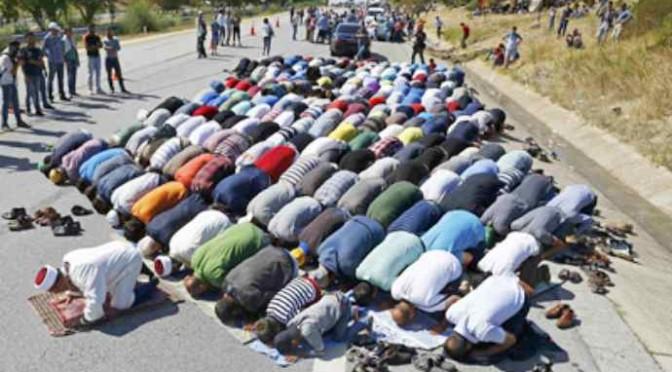 """Profughi protestano: """"Vogliamo piatti tipici islamici e bus gratis"""""""