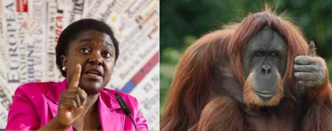 Calderoli a giudizio: paragonò Kyenge ad orango