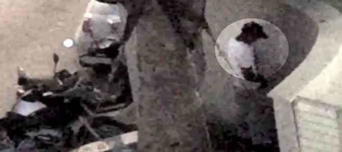 Pescara: africani piscioni, vigili passano e se ne vanno – VIDEO