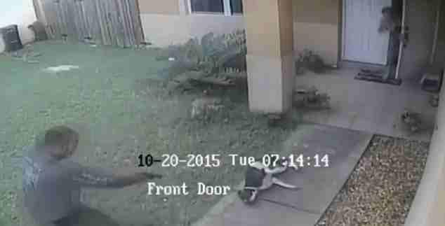 Agente nero uccide brutalmente un cane – VIDEO CHOC