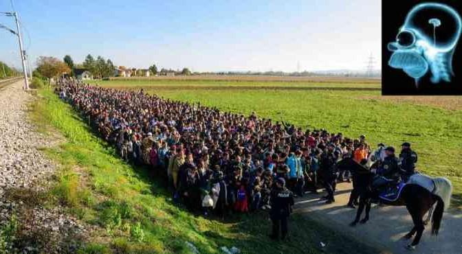 Dipendenti pubblici a servire i profughi, l'idea slovena