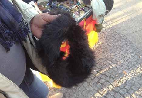 Ambulante pakistano vendeva pellicce di cane