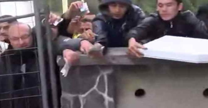 Profughi ordinano pizze in attesa di passare confine – VIDEO