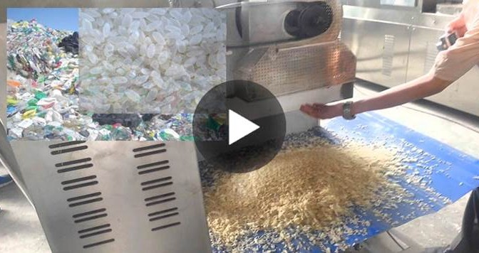 Riso di plastica da Cina: allarme per alimento contraffatto mischiato a quello vero