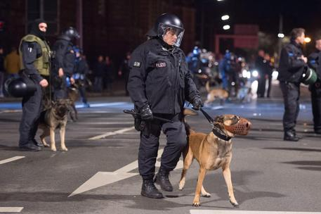 "Profugo decapita cane poliziotto al grido ""Allah Akbar"""