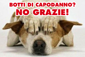 VENEZIA: niente botti a Capodanno per tutelare animali