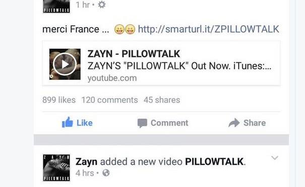 Fan di Zayn esaltati per 'Grazie Italia': ma c'è anche 'Merci France' e..