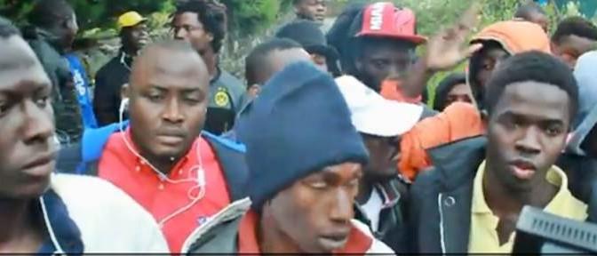 AFRICANI INSODDISFATTI OSPITALITA' IN OASI NATURALISTICA – VIDEO