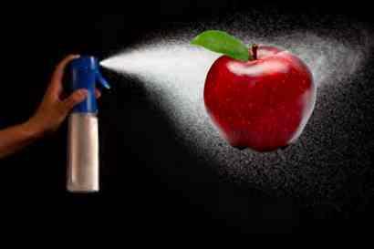 Bayer – Monsanto: cosa accade quando un produttore di DDT sposa uno di CIBO
