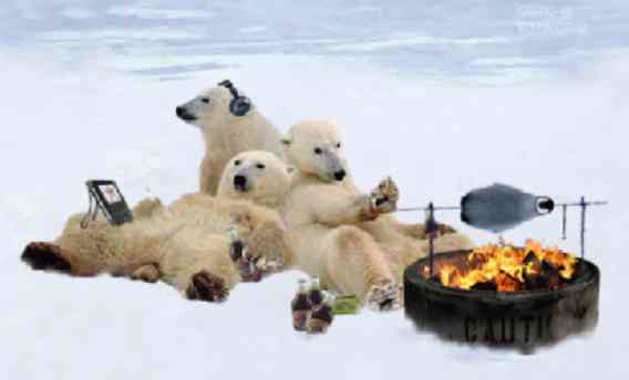 Sorpresa: i ghiacci artici non si sciolgono