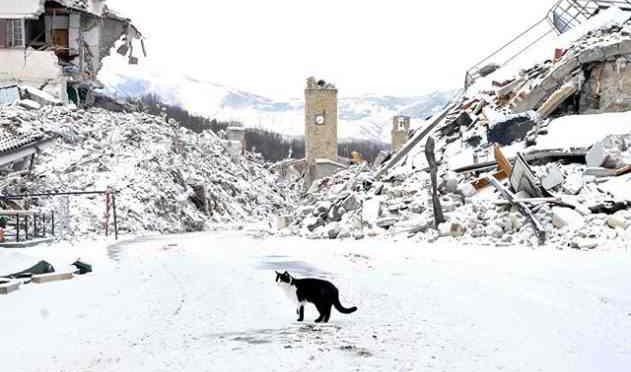 Amatrice al gelo, terremotati ancora sotto la neve dopo anni: governo pensa ai clandestini