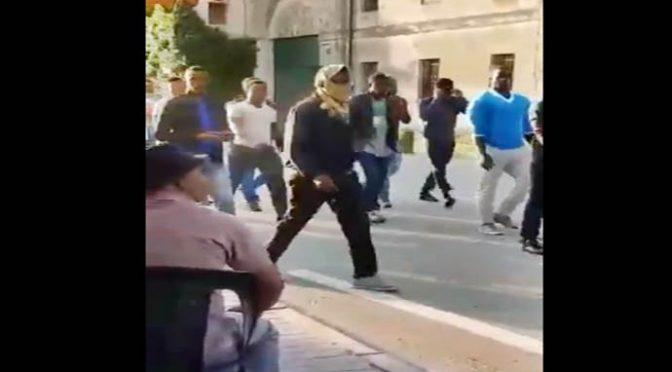 Padova, truppe africane marciano indisturbate scortate da Carabinieri – VIDEO CHOC