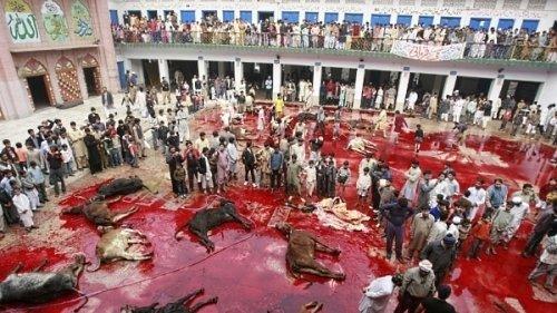 Islam, Pd: concedere Palasesto per Festa dello Sgozzamento dei musulmani